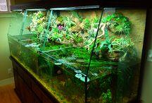 Stillwater Habitats & Terrariums