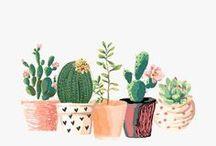 Ilustraciones para decorar