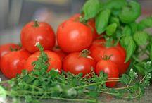 I ♥ Tomato / Vegiterraneo Tomato