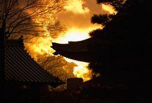 Kyoto / by Stan Wang