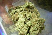 Cannabis Strains / by Nuff Said