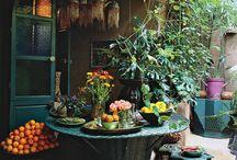garden state / by Schmelsey Schmorrowman