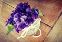 My sweet home / Sweet flower
