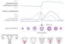 Fertilidade / Dicas e informações sobre fertilidade fertility