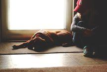 wymyślam sobie psa * dreaming about a dog