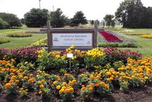 AAS 2015 DG Contest / 2015 All-America Selections Display Garden Landscape Design Contest Winners Category I: fewer than 10,000 visitors per year Category II: 10,001 - 100,000 visitors per year Category III: Over 100,000 visitors per year. / by National Garden Bureau