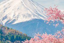 Primavera en Japón
