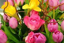 Virágot egy mosolyért! / Virágot egy mosolyért - mosolyt egy virágért  http://viragotegymosolyert.hu/