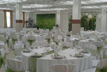 Dekorképek / Esküvői dekorációk