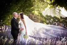 Bedell Cellars Weddings / Classy, Elegant, Sophisticated.
