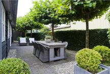 Courtyard Spaces