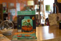 taproot stockists / Just a few of the wonderful places you can find Taproot!