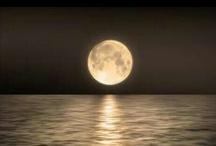 Moons... / by Shelley Drnek