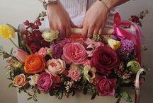 Bednička + kvety