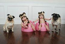 Cachorros/HotDogs / LOVE