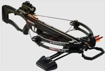 Youth Bows / Youth archery sets, kids crossbows and more. Start your child on the outdoor life today.
