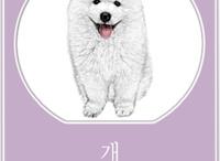 Hangul Flashcards