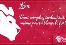 Lion / Vous savez que le Lion est fier, volontaire et organisé. Mais saviez-vous que votre tendance à tout régenter doit être maîtrisée ? Parcourez notre tableau du Lion.