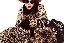 Animal Prints & instincts  ♛ Take A Walk On The wildside ♛ / ♛ Queen of The Jungle ♛