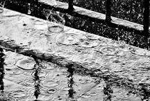 Déšť ...