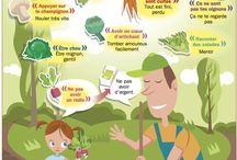 expression autour des légumes
