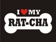 I <3 My RAT-CHA <3