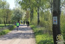 Szlak rowerowy Grodzisk Pruskich / Trasę można podzielić na 2 odcinki. Pierwszy prowadziłby z  Mikołajek do Mrągowa (26 km), a następnie z Mrągowa do Świętej Lipki (25 km).