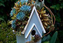 Hoş Bahçe Dekorasyonları