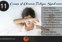Adrenal Burnout / Causes of Adrenal Burnout