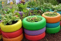 School Garden ideas