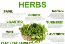 "Herbal Health / The use of plants for medicinal purposes, and the study of such use...Visit: www.CodeRedFitness.com for More!>>Read the ""CODE RED FITNESS TIMES"" Daily! / by Code Red Fitness"