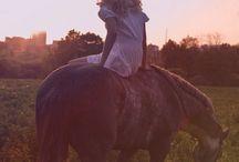 pferde sprüche