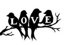 Love Birds / love birds, especially robins