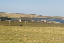 For Sale on Orkney Isles / properties for sale with land or the Orkney Islands