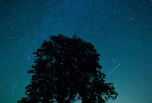 Csillagok Univerzum