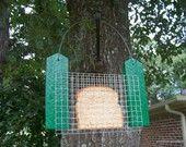 Birds & backyard wildlife / by Donna Harper