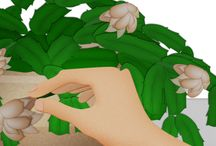 Growing a Green Thumb Plant by Plant