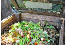 Grow Arakura! / Ideas and plans for the Arakura School Garden