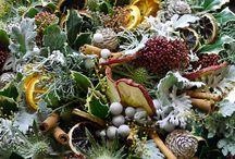 Il Natale di Flò / La bacheca il Natale di Flò vuole essere uno spazio coinvolgente dove esprimere calore, creatività e gioia