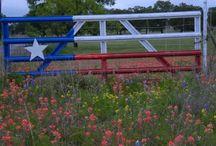Strictly Texas! / by Elizabeth Everist
