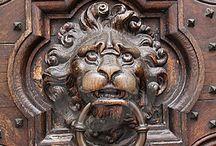 Lion-alarm!