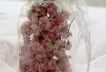 Dried flowers