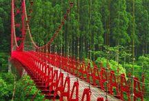 Bridges/Walkways/Viaducts / by Rose Morgan