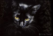 BW - CATS