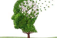 Sağlık Tavsiyeleri - Health & Lifestyle Recommendation
