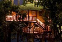 Tree Houses Brazil