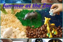 Zoo animal activities