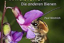 Bienen / Alles zum Thema Bienen und Wildbienen im Garten.