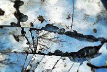 Natuur / Mooie plaatjes uit de natuur