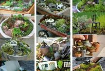 Fairy Gardens - Fun for Mommy & Daughter / Cute fairy gardens for my daughter and I to get ideas on and see what we would like to put together.